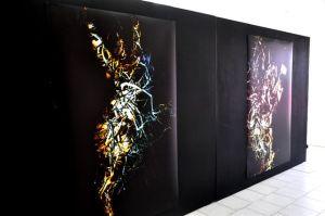 Les oeuvres de Shirley Rufin exposées à Aruba