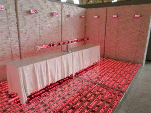 Biennale de Cuba 2O12