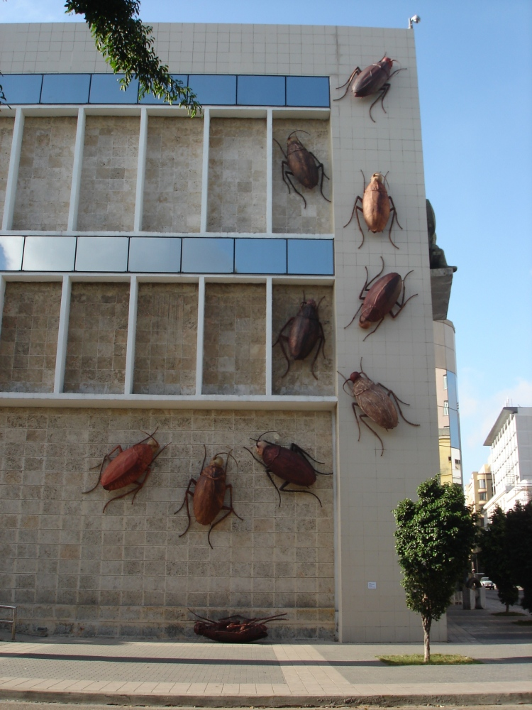 Biennale de la Havane 2009