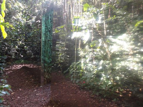 Vegetation room : parois réfléchissantes et porte