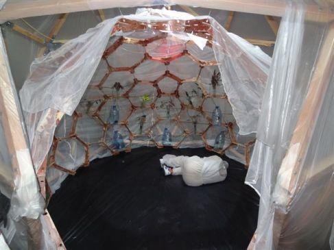 HenriTauliaut, Jungle Sphère - Performance d'Annabel Gueredrat - Centre Wifredo Lam