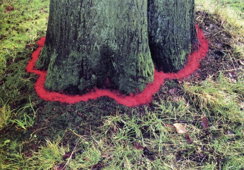 land-art-onf-andy-goldsworthy
