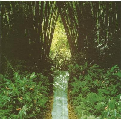 Nils Udo Porte de Bambous Dyptique part2 Résidence du Frac Martinique Ajoupa Bouillon 1991