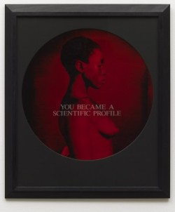 Carrie Mae Weems From-here-i-saw-what-happened-and-i-cried-