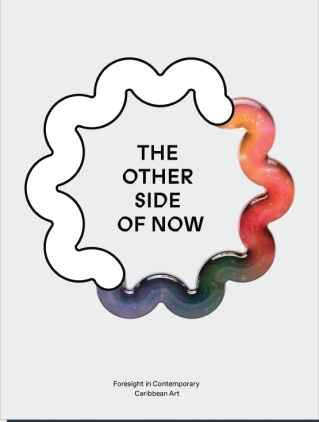 The other side of now en 2019 au Perez Art Miami Museum Curator Maria Elena Ortiz