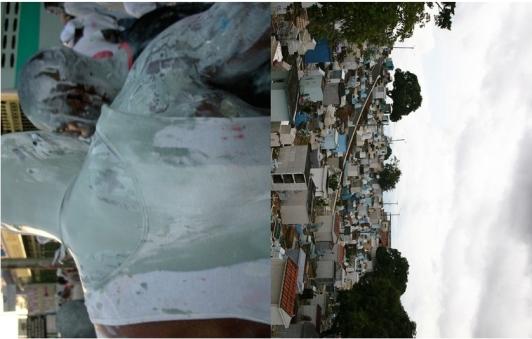 Karyn Olivier Jouvert Manaus 2014