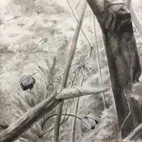 Mais le monde est une mangrovité Ludovic Nino